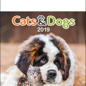 Calendrier mural 2019 Cats and Dogs 13p