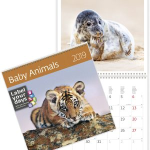 Calendrier mural Baby Animals 30x60