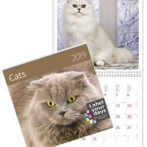 Calendrier mural 2019 Chats 30x30