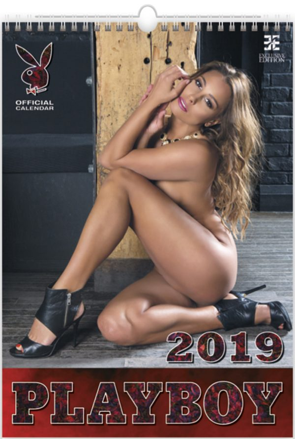 Calendrier mural 2019 Pin-up Playboy