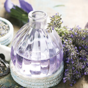 Calendrier Provence 2020 Janvier