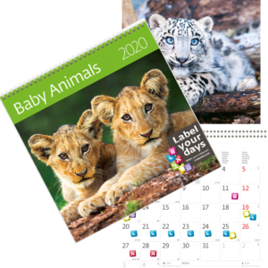 Calendrier Baby Animals 2020