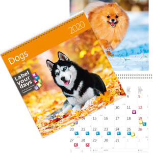 Calendrier Dogs 2020