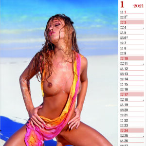 Calendrier pin-up Tropical Girls 2021 Janvier
