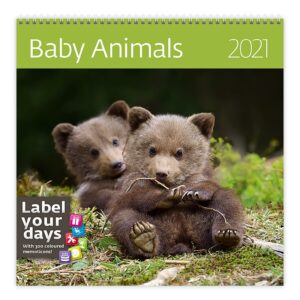 Calendrier mural 30x30 Baby Animals 2021