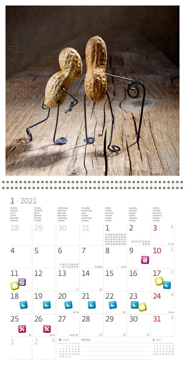 Calendrier mural 30x30 Funny Nuts 2021 Janvier