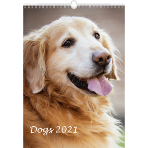 Calendrier mural Dogs 2021
